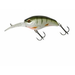 Gigan 55 F Green Perch