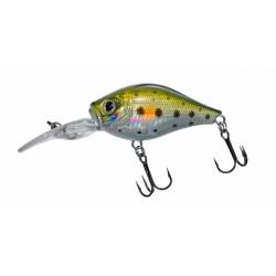D- Gigan 39 F Spot Green Trout
